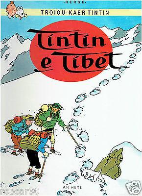 SCHLUMPF PITUFO COMIC ''TINTIN IN TIBET'' in BRETON 1