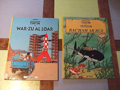 Rare lot de 2 albums de TINTIN en Breton TBE Hergé Objectif lune & le trésor...